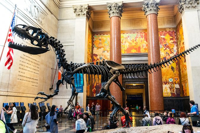 American-Museum-of-Natural-History-675x450 8 Best Travel Destinations in June