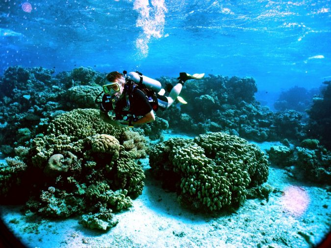 diving-and-snorkeling-the-Red-Sea-in-Jordan-675x506 8 Best Travel Destinations in June