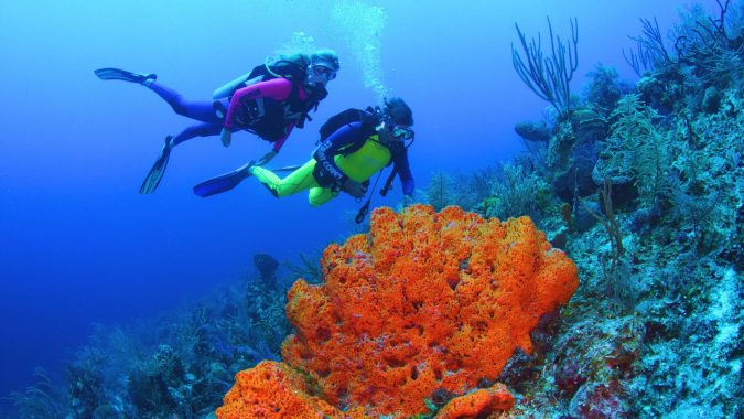 Orange-Bowl-reef-Bahamas-675x380 Top 10 Most Luxurious Cruises for Couples in 2020