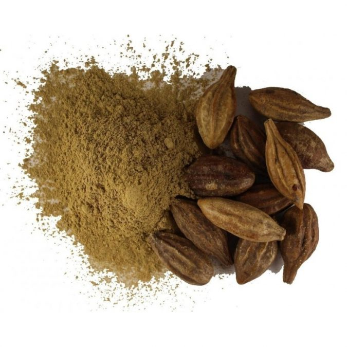 Terminalia-Chebula.-675x675 8 Natural Supplements You Should Add to Your Health Regimen