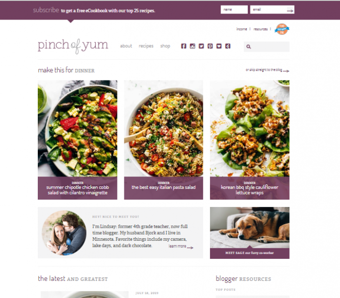 Pinch-of-Yum-675x593 Best 50 Healthy Food Blogs and Websites to Follow in 2020