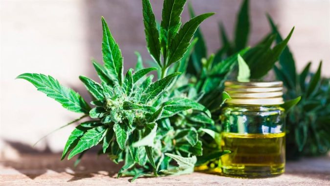 CBD-oil-675x380 Top 15 Medical Uses of CBD Oil That You Should Know