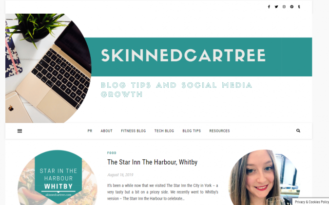 Skinnedcartree-website-screenshot-675x421 Best 50 Lifestyle Blogs and Websites to Follow in 2019