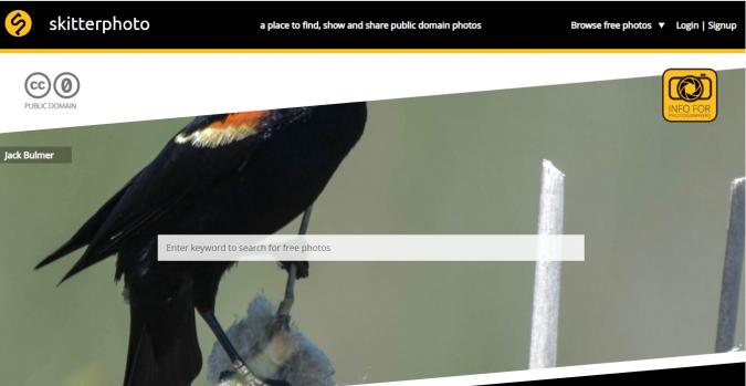 Skitterphoto-stock-image-website-screenshot-675x349 Best 50 Free Stock Photos Websites in 2020