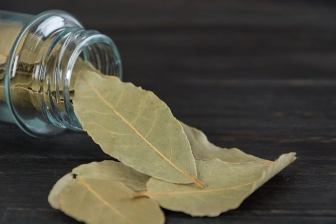 Bay-leaves-675x450 Best 15 Natural Remedies for Getting Rid of Pests in Your House