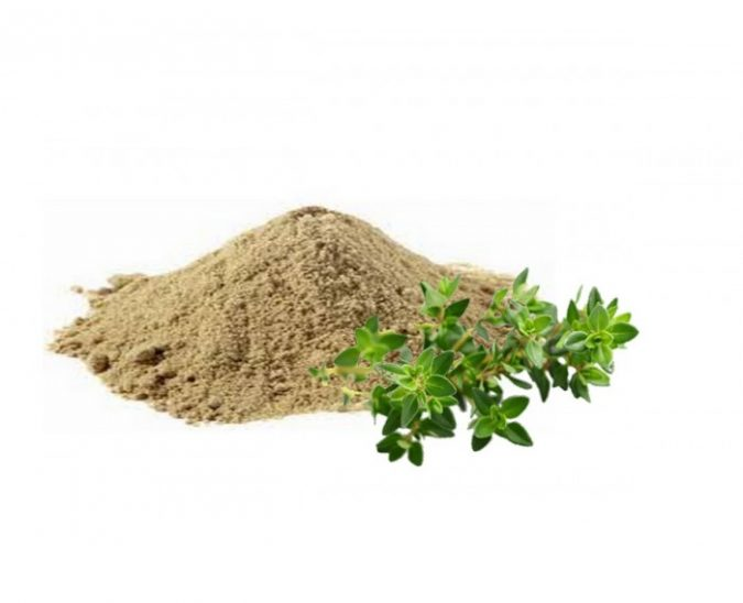 Bacopa-Monnieri-e1570950243522-675x548 Best Nootropics to Improve Your Brain Power
