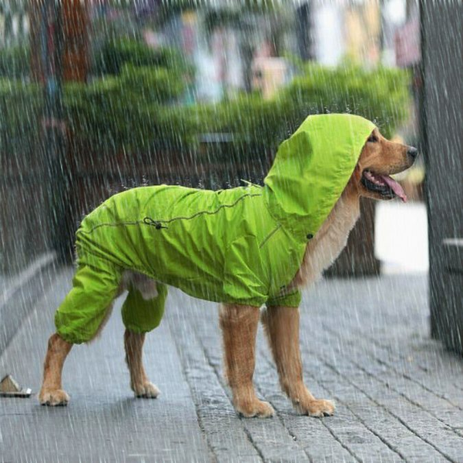 Rain-jacket.-675x675 Top 10 Latest products to Enjoy Your Next Winter