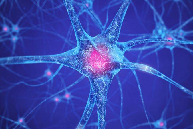 brain-cells-nootropics-675x450 Best Nootropics to Improve Your Brain Power