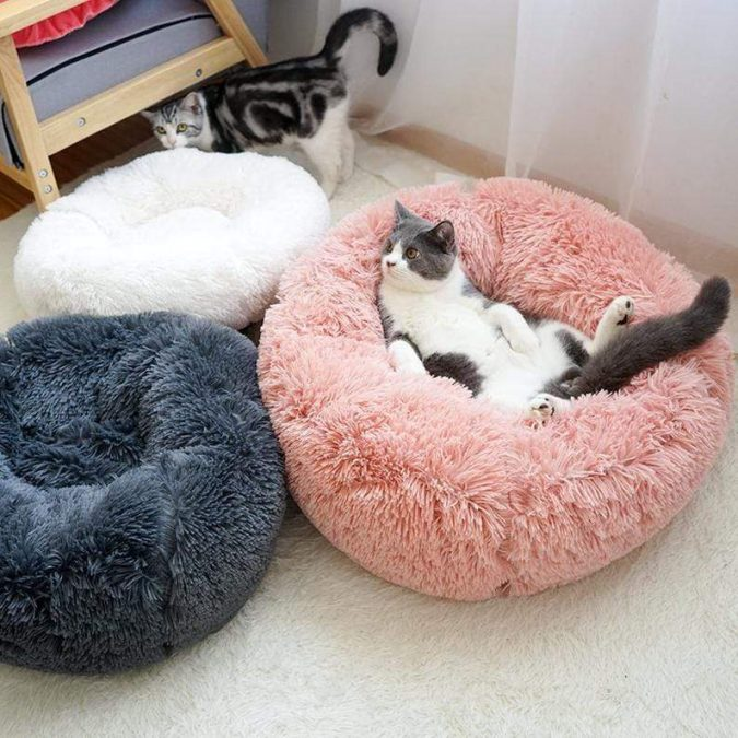 cat-house-675x675 Top 10 Latest products to Enjoy Your Next Winter
