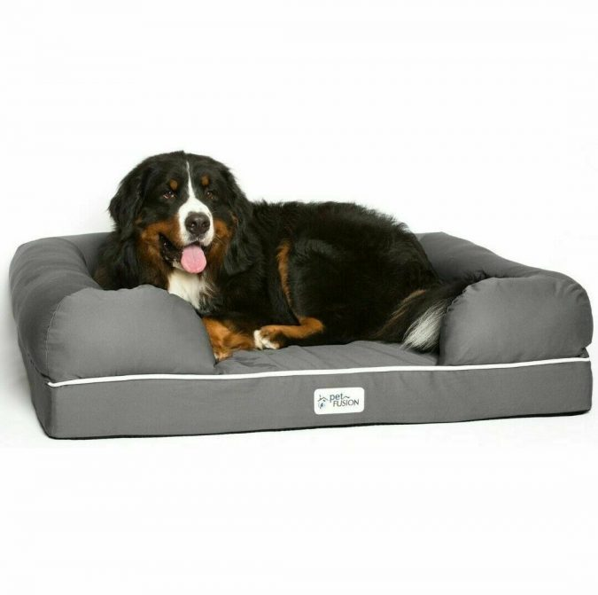 Dog-Bed.-1-675x671 Top 15 Most Expensive Christmas Gifts Worldwide