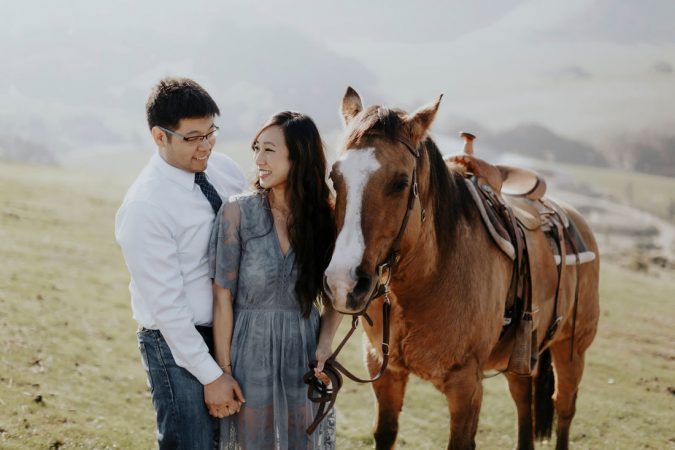 horse-675x450 Top 10 Most Luxurious Wedding Gift Ideas for Wealthy Couple