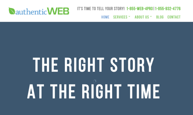 AuthenticWeb-screenshot-675x402 Top 75 SEO Companies & Services in the World