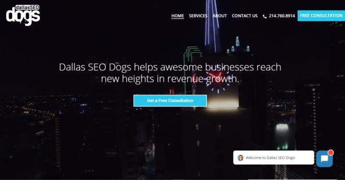 Dallas-SEO-Dogs-screenshot-675x353 Top 75 SEO Companies & Services in the World