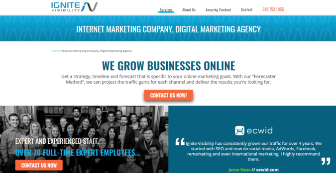 Ignite-Visability-screenshot-675x349 Top 75 SEO Companies & Services in the World