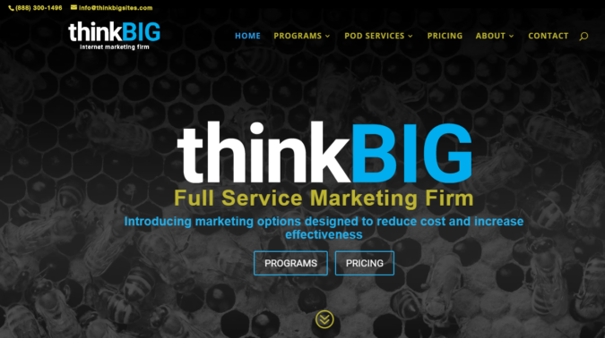 Think-Big-SEO-website-screenshot-675x378 Top 75 SEO Companies & Services in the World