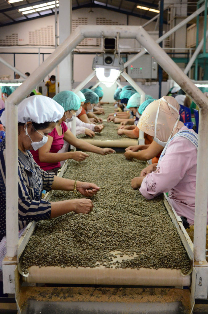 Indonesia-coffee.-675x1019 Top 10 Coffee Producing Countries in the World