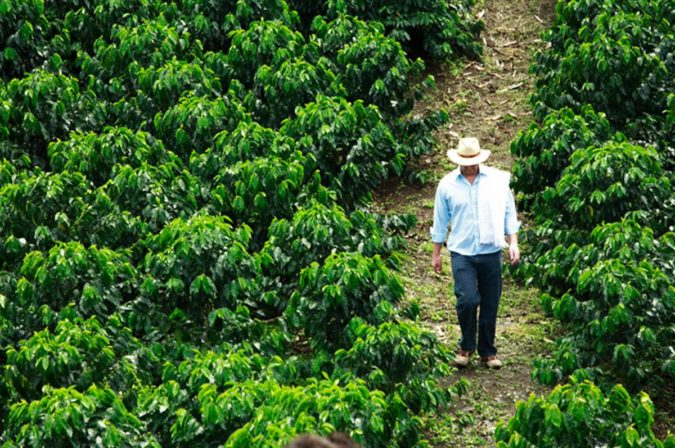 Mexico..-675x448 Top 10 Coffee Producing Countries in the World