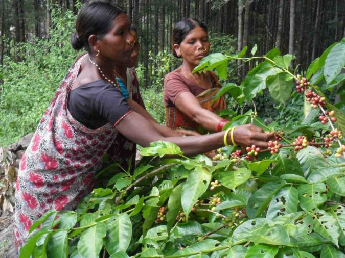 coffee-farmers-675x506 Top 10 Coffee Producing Countries in the World