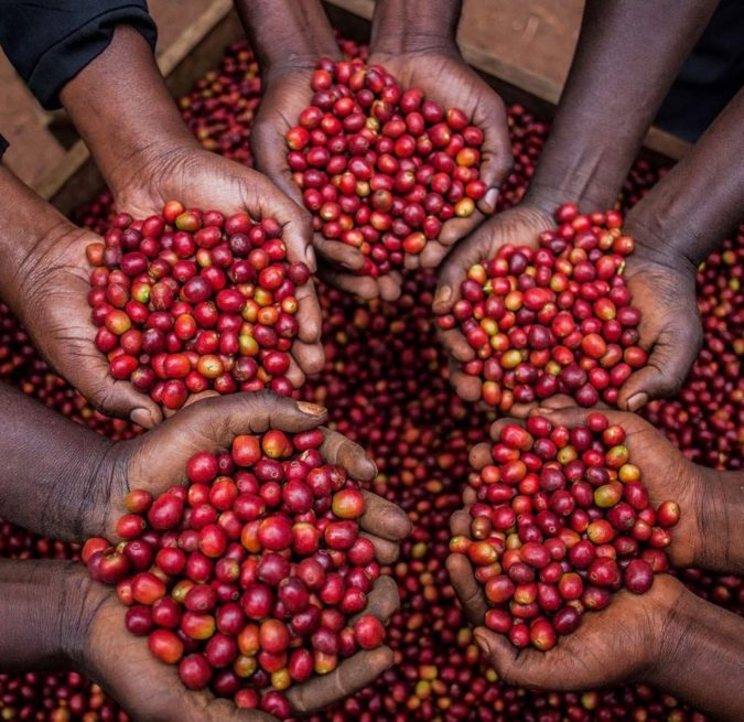 coffee-farmers.-675x655 Top 10 Coffee Producing Countries in the World