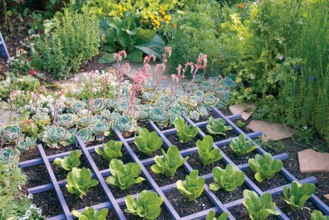 home-garden-ediable-landscape-675x452 Top 20 Garden Trends: Early Predictions to Adopt