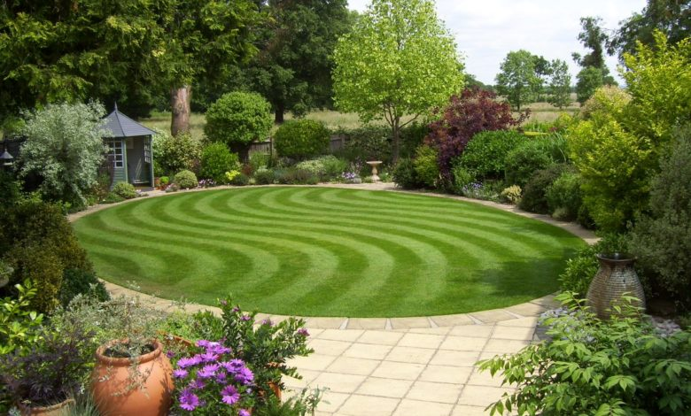 Photo of Top 20 Garden Trends: Early Predictions to Adopt