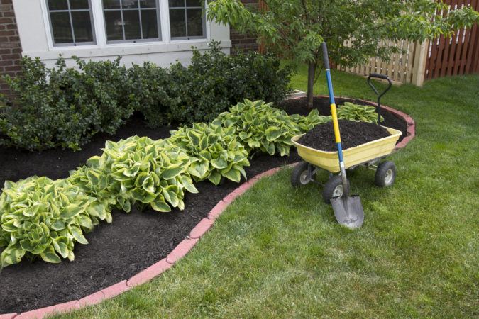 low-maintenance-home-garden-675x450 Top 20 Garden Trends: Early Predictions to Adopt