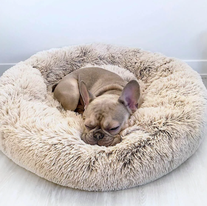 Calming-Dog-Beds-675x672 6 Anxiety Relief Routines at Your Dog's Bedtime
