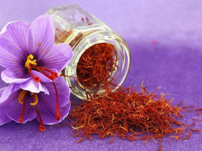 Saffron-Crocus.-2-675x506 Top 10 Most Expensive Flowers in The World