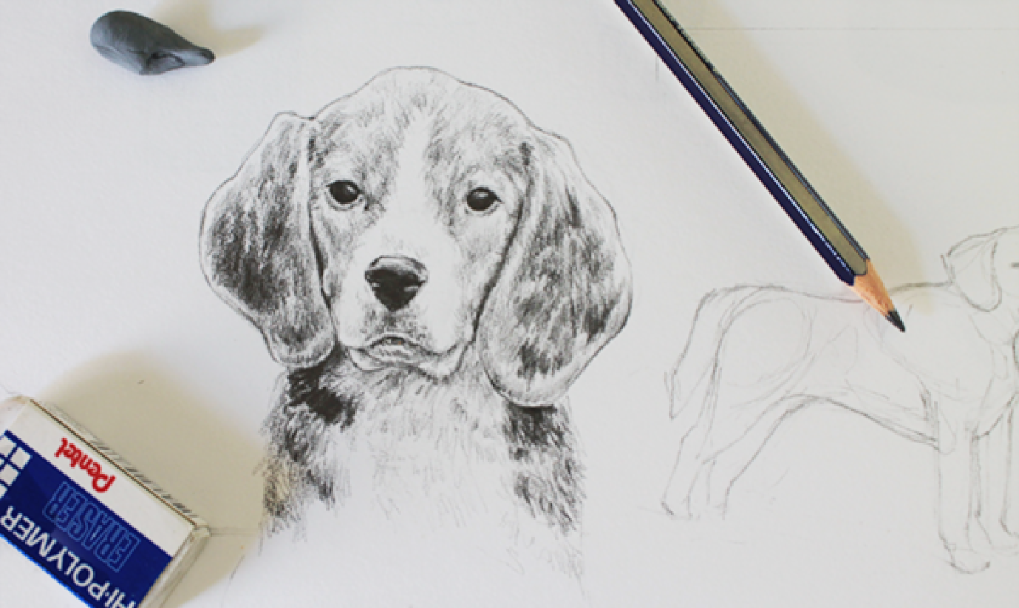 Drawing-Cute-Animals 7 Tips to Draw Cute Animals