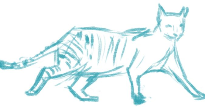 Pick-a-pose-675x365 7 Tips to Draw Cute Animals