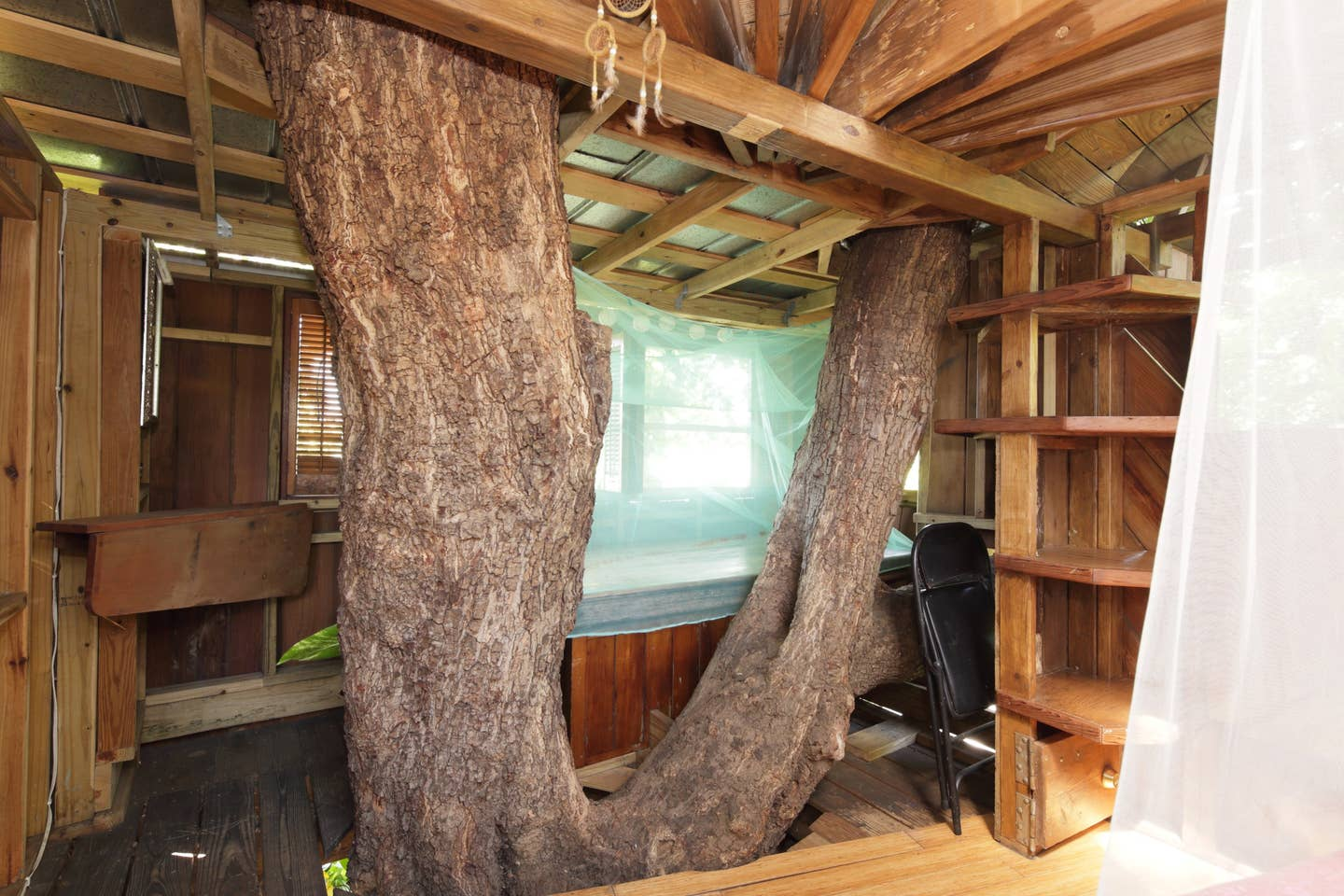 Tree-House-in-Florida. Top 25 Strangest Houses around the World