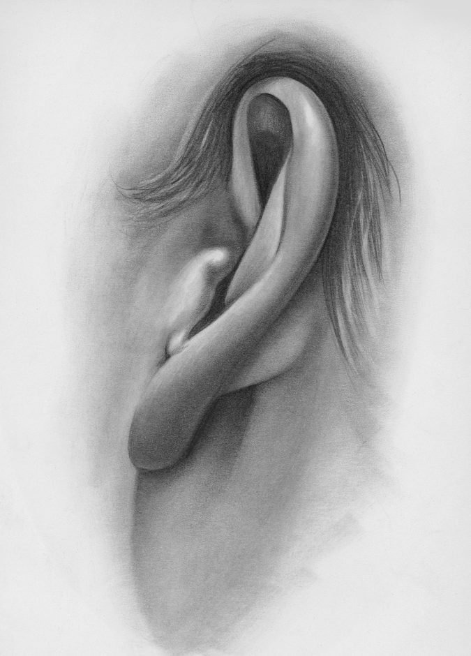 Adding-the-ear.-675x940 How to Draw a Realistic Face Step By Step