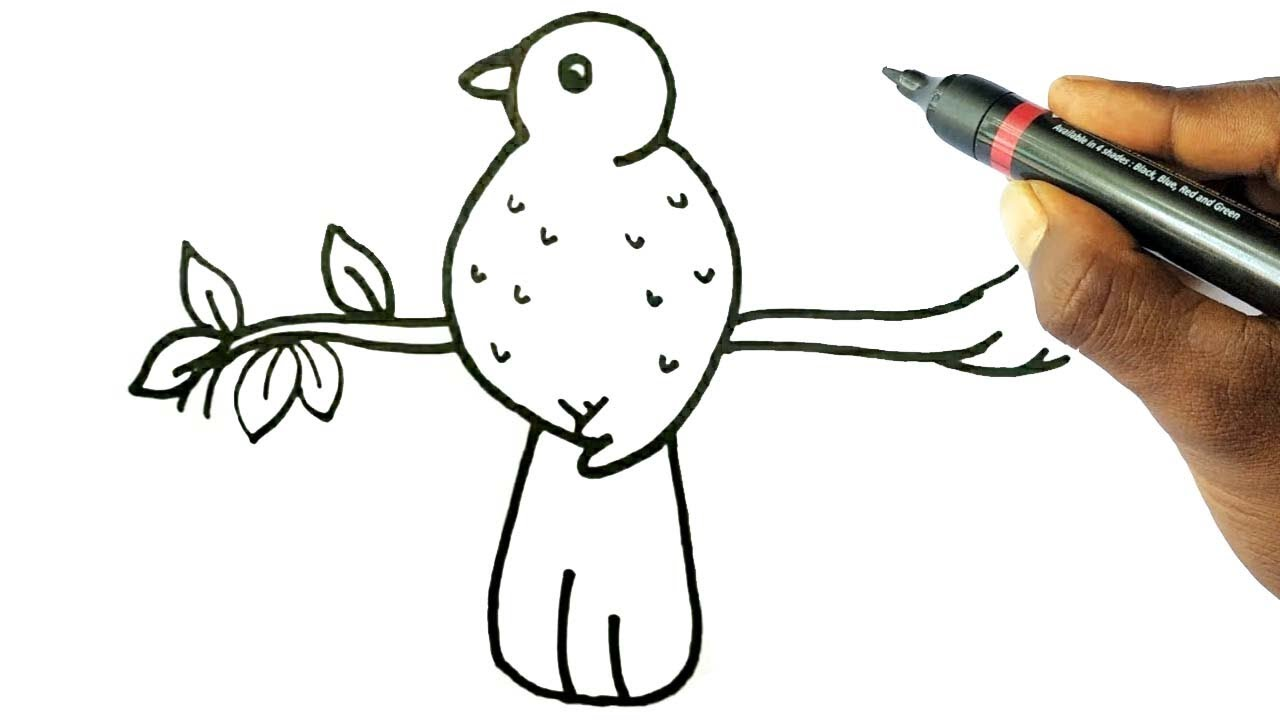 Bird-1 Top 10 Easiest Things to Draw