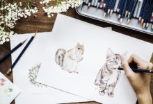 Photo of 7 Tips to Draw Cute Animals