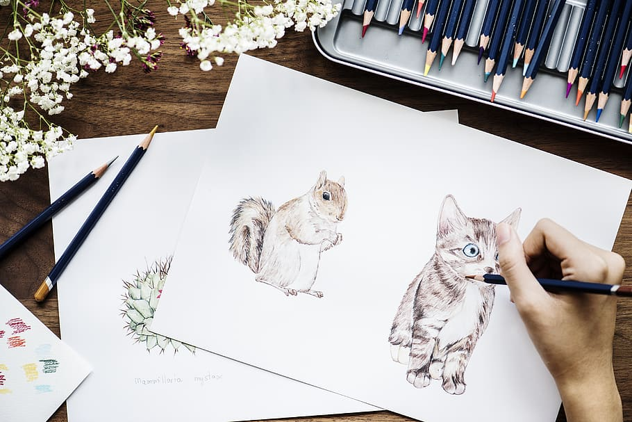Drawing-animals 7 Tips to Draw Cute Animals