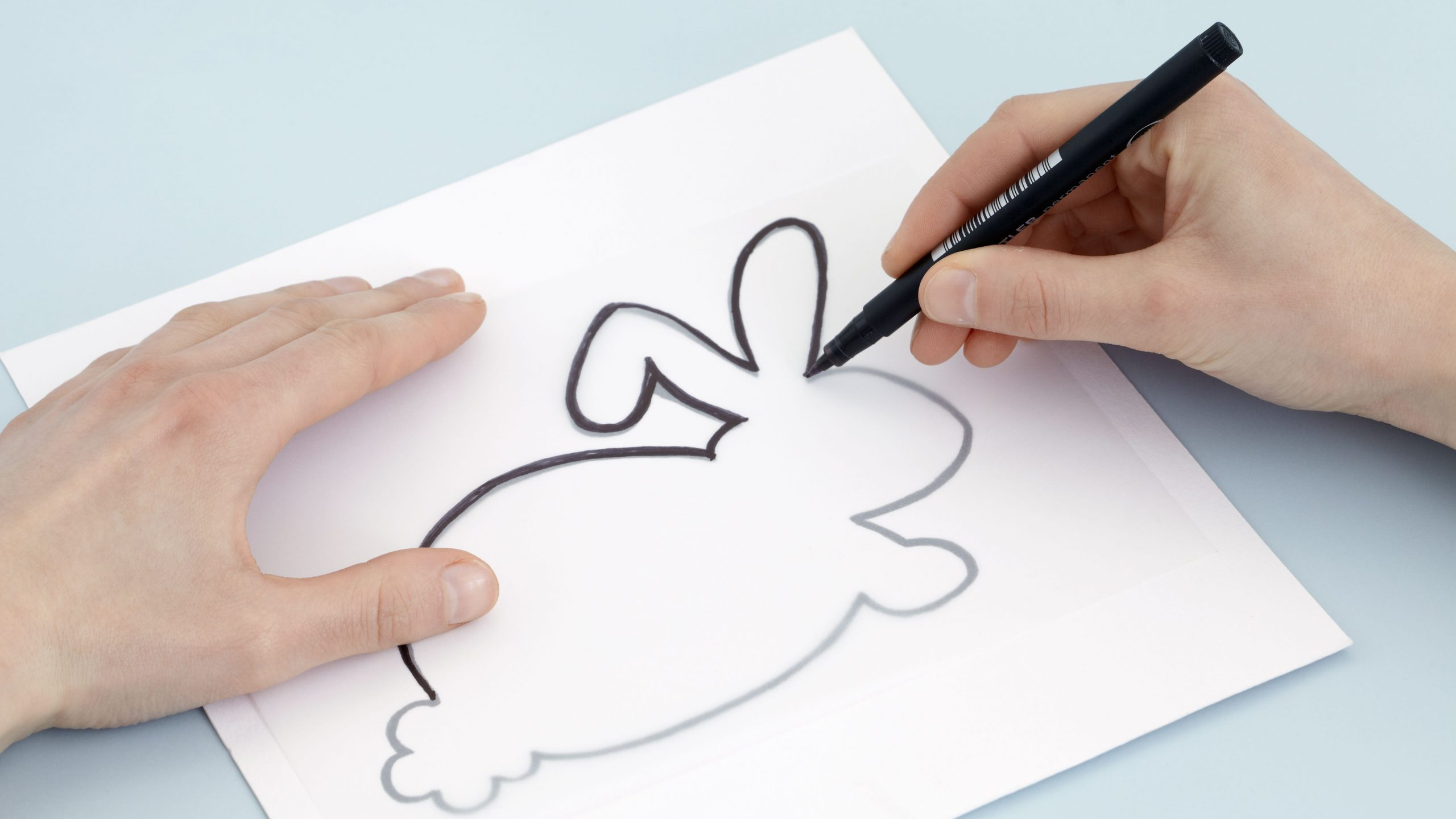 Making-different-sketches 7 Tips to Draw Cute Animals