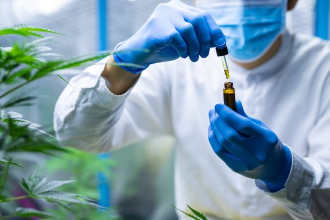 cannabis-research-675x450 CBD During Pregnancy: What You Should Know
