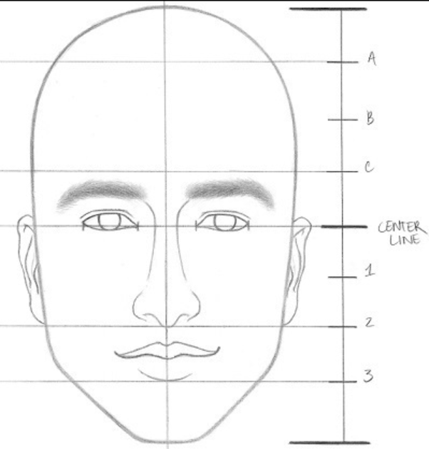 faces-proportions-1 How to Draw a Realistic Face Step By Step