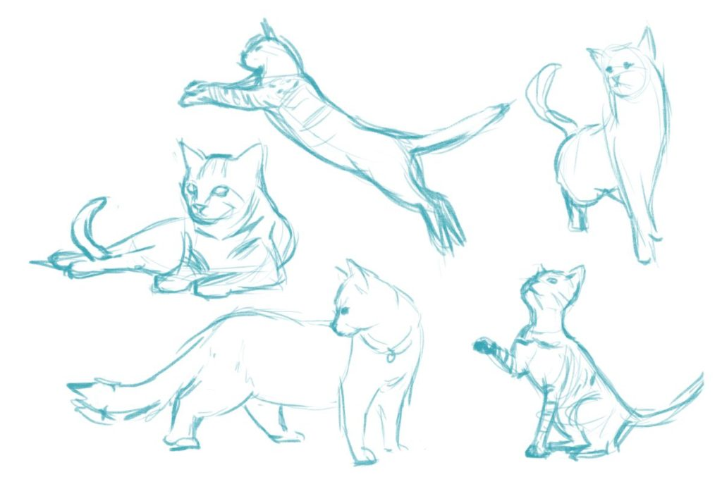 sketches-1024x687 7 Tips to Draw Cute Animals