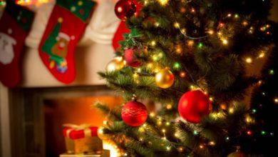 Christmas-Decor-4-390x220 98+ Magical Christmas Light Decoration Ideas for Your Yard