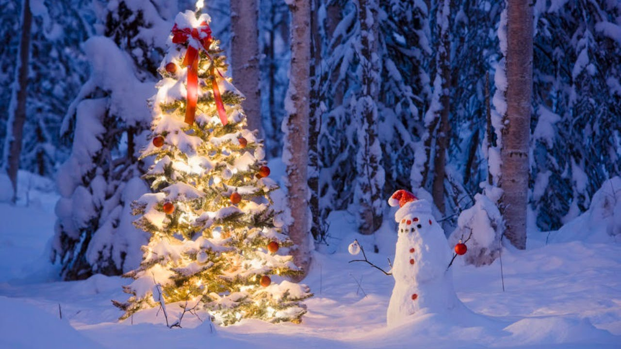 Christmas-Tree. 70+ Impressive Christmas Decorations to Do Yourself in 2021