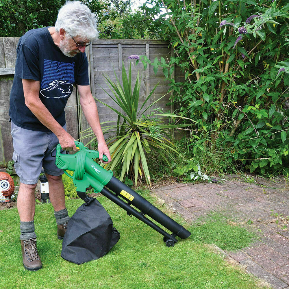 Clean-and-hoover-your-shed 10 DIY Hacks to Get Rid of Pests in Your Garden Shed