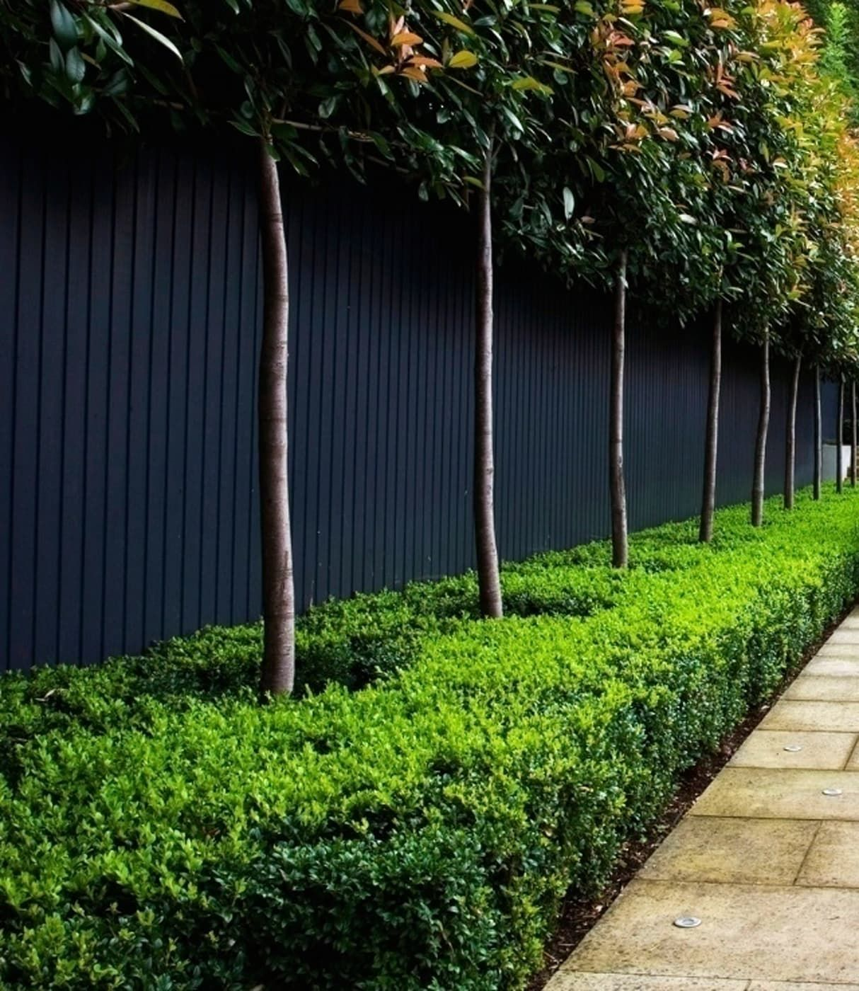 hedges-fences-or-boundary-walls.. 100+ Surprising Garden Design Ideas You Should Not Miss in 2021