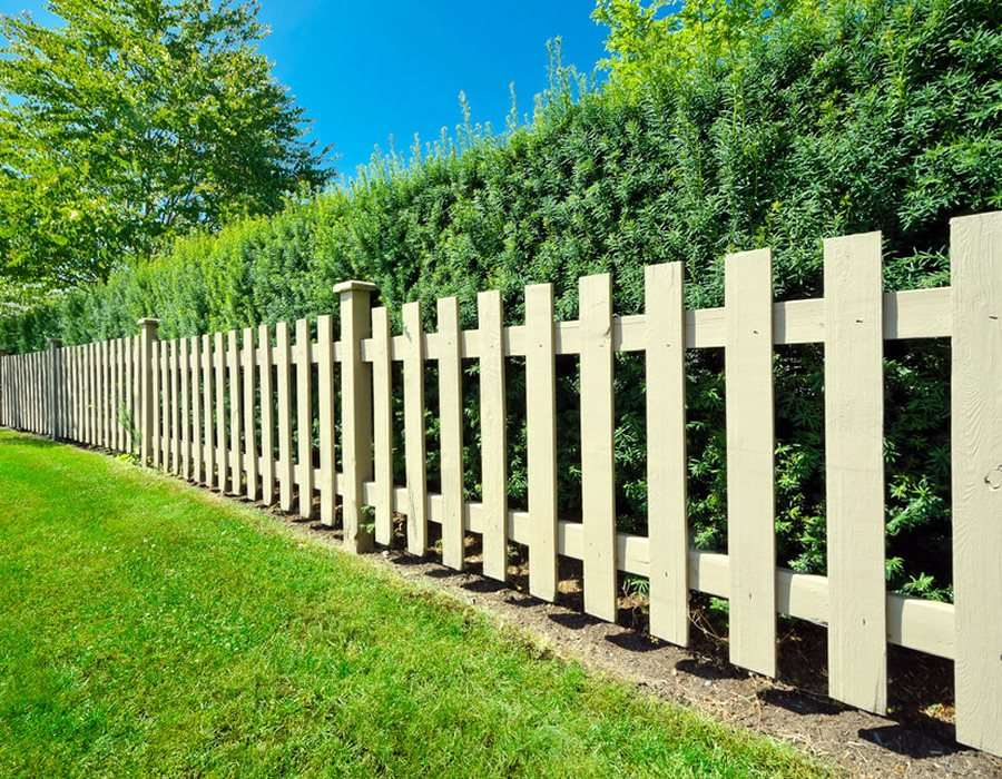 hedges-fences-or-boundary-walls. 100+ Surprising Garden Design Ideas You Should Not Miss in 2021