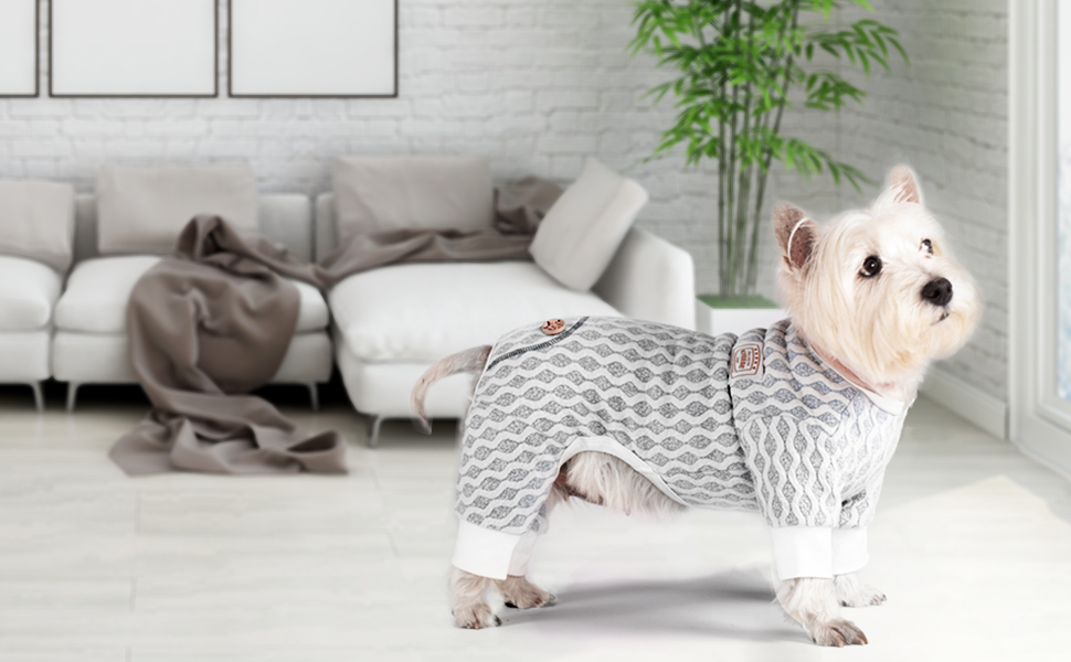 pet-pajamas-for-dogs. Cutest 10 Pajamas for Dogs on Amazon in 2021/2022