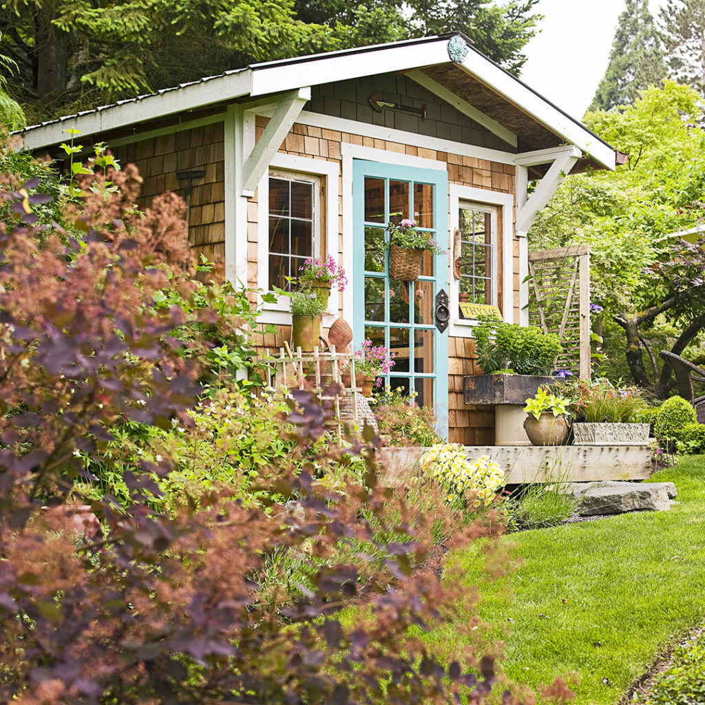 plants-around-your-shed-1024x1024 10 DIY Hacks to Get Rid of Pests in Your Garden Shed