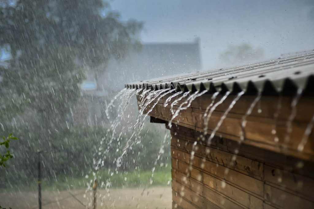 rainwater-1024x683 10 DIY Hacks to Get Rid of Pests in Your Garden Shed