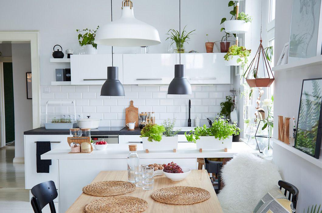 Adding-plants-1 80+ Unusual Kitchen Design Ideas for Small Spaces in 2021