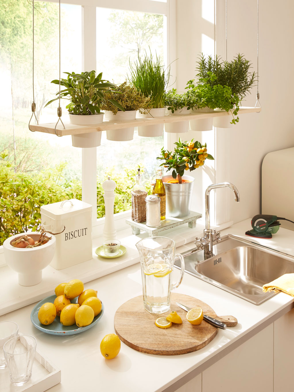 Adding-plants. 80+ Unusual Kitchen Design Ideas for Small Spaces in 2021