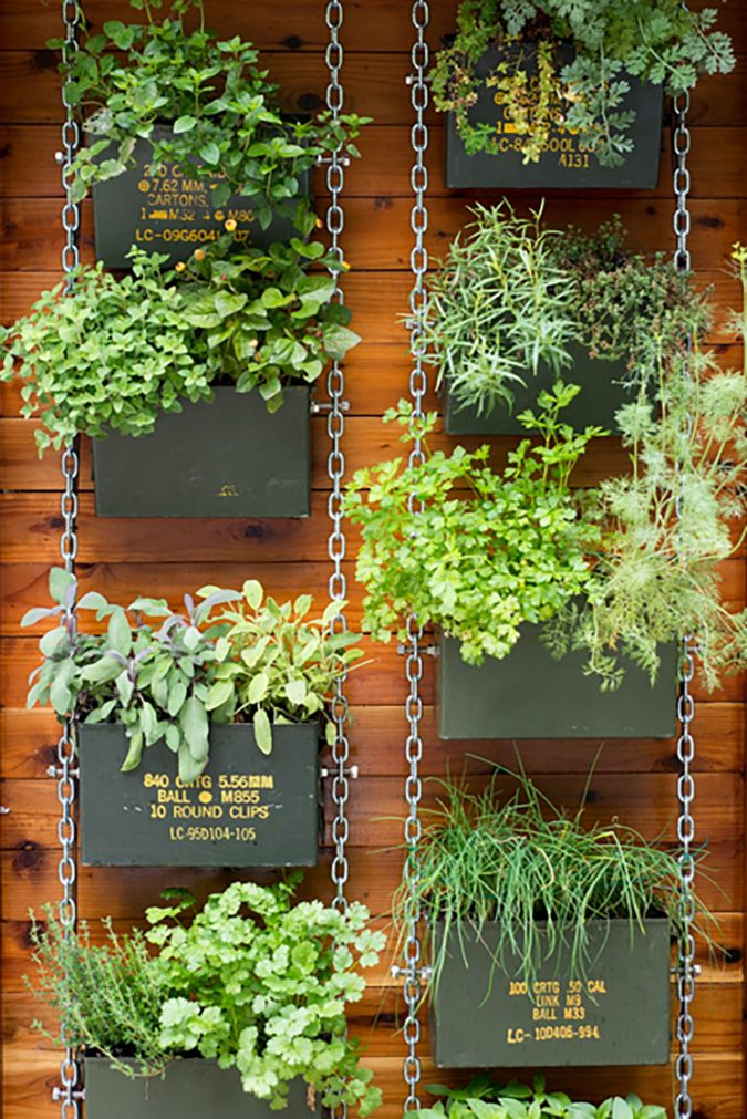 vertical-planting.-3-675x1011 100+ Surprising Garden Design Ideas You Should Not Miss in 2021